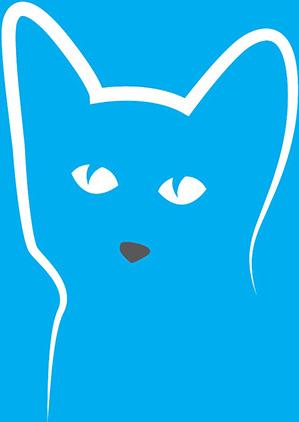 Konectoulání - kočka